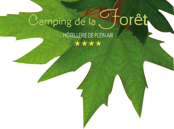 4 Star campsite near Rouen